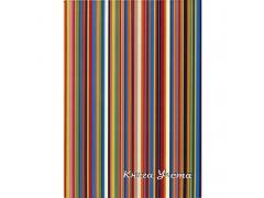 Книга учета SPONSOR, тв. переплет с припресс., газетка, кл., 96 л., арт. SL96/5
