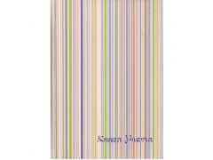 Книга учета SPONSOR, тв. переплет с припресс., газетка, лин., 96 л., арт. SL96/1
