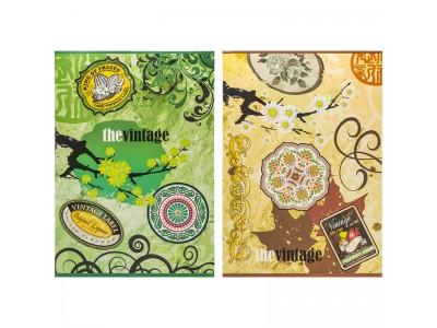Тетрадь ACTION! ВИНТАЖ, мелованный картон, уф-лак, клетка, ф. А4, 80 л., 2 дизайна. арт.AN4 8009/5