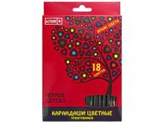 Набор карандашей цветных ACTION! 18 цв, черное дерево, ACTION! , 18цв,европодвес, арт. ACP505-18