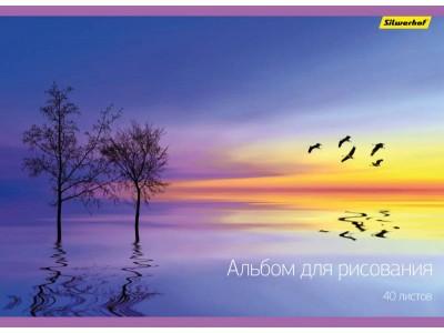 Альбом для рисования Silwerhof  40л. A4 2диз. мел.картон офс.лак склейка