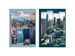 """Ежедневник BG А5, 352 стр. """"City collection"""" (ассорти) недатированный, ламинация, арт. Ен5_7БЦ352_лам 4034"""
