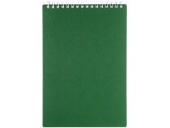 Блокнот BG, ДЛЯ КОНФЕРЕНЦИЙ, зелёный, на гребне, кл.,  ф. А5, 60л., арт. Б5гр60 1591